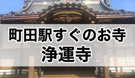 町田駅から一番近いお寺!浄運寺に行ってみた
