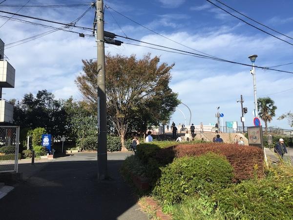 横浜線沿線で一番近い遊べる河川敷!鴨居駅から徒歩2分の鶴見川