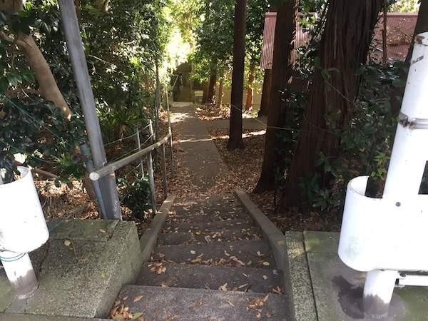 鴨居駅から徒歩5分!キツい坂の上にある神社「鴨居杉山神社」