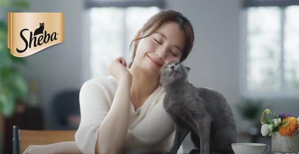 猫好きが選ぶ!最高に可愛くて癒される猫のCM5選